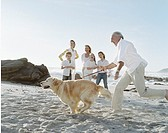 Grandfather on beach with dog and family laughing