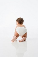 Rear view studio shot of baby crawling