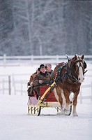 Man driving horse and carriage for couple in snow