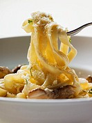 Ribbon pasta with ceps and grated Parmesan