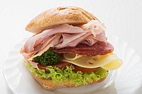 Ham, salami and cheese sandwich