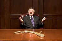 Businessman with python snake on conference table
