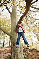 Boy playing on tree