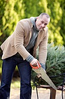 Man chopping down a Christmas tree