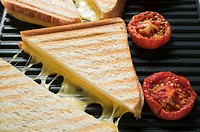 Toasted cheese sandwiches & tomatoes on grill plate close-up