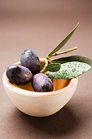 Olive sprig with black olives in terracotta bowl