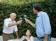 Girl 8-12 looking up at father and grandfather toasting wine glasses