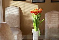 Vase of tulips atop glass dining table at sunset