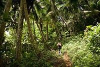 Climbing to 'El Yunque' peak (569 m.). Baracoa. Guant&#225;namo province. Cuba