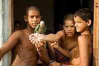 Children with small parrot. Trinidad. Sancti Sp&#237;ritus province, Cuba