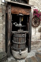 Wine press in a winery, Umbria, Italy