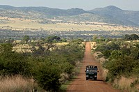 Truck moving on a dirt road passing through a landscape, Pilanesberg Park, North West Province, South Africa
