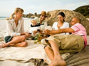 Friends having wine on the beach
