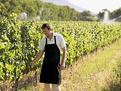 A man at a vineyard