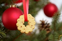 Christmas cookie on Christmas tree