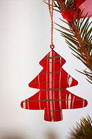 Ornament on Christmas tree (thumbnail)