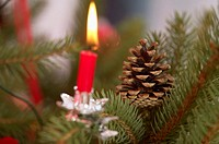 Burning candle and pine cones on Christmas tree