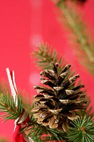 Pine cone on Christmas tree