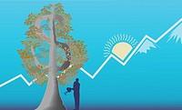 Businessman growing a money tree