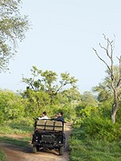 Group of people in jeep on safari back view