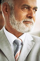 Businessman with gray beard