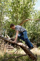 Side profile of a boy climbing up a fallen tree