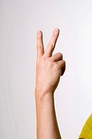 Hand showing sign language
