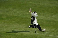 Panda Playing Football