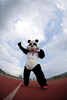 Panda Punching the Air