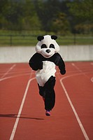 Panda Sprinting on a Track