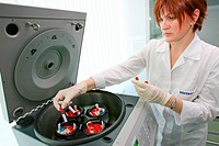 Blood sample testing  Medical technician preparing blood samples for a chemiluminescence immunity test  This test uses fluorescent antibodies to bind ...