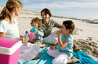 Parents and two children having a picinic on the beach, outdoors