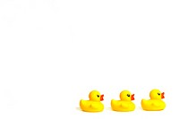 Three yellow rubber ducks in a row