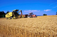 Combine Harvesting, Near Bray, Co Wicklow