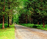 Rural road, eastern townships, Quebec, Canada