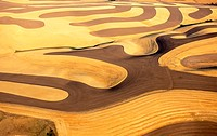 Industry, Farming, pattern of harvested wheat fields , aerial view, near Pullman, Washington,