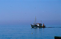 Fishing Boat, Chora  Anafi, Cyclades, Greece, Europe