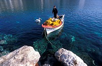 Fisherman standing on a boat, next to a pelican  Astypalea, Dodecanese, Greece