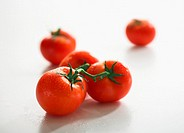 Vine tomatoes, close-up