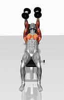 Dumbbell incline fly exercises Part 1 of 2