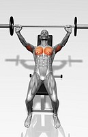 Bench press incline Part 1 of 2