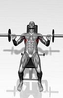 Bench press incline Part 2 of 2 (thumbnail)