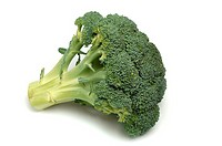 Head of broccoli on white background