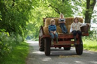 Three children 5_9 sitting on trailer on country lane
