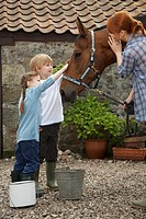 Mother and children 5-6 7-9 stroking horse outside stable (thumbnail)