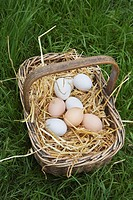 Eggs in basket close_up