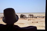 Sossusvlei Desert Dunes Namib Desert