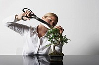 Young business woman at desk pruning Bonsai tree (thumbnail)