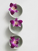 Flowers decorated in tiny bowls