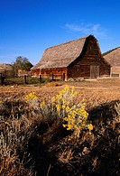 Agriculture - An old rustic wooden barn and corrals in Sagebrush country / nr Hot Springs, Montana, USA